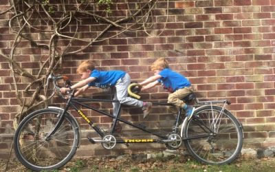 Guest Blog: Enter The Bicycle
