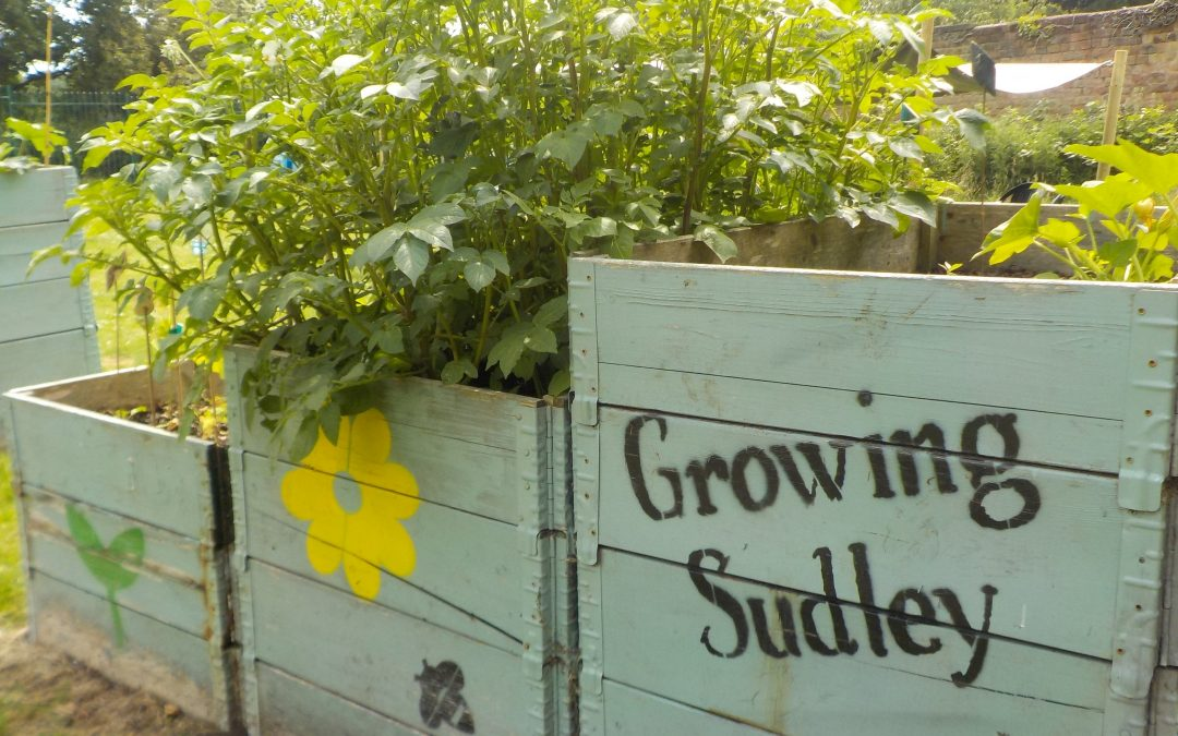Growing Sudley: enabling wellbeing through nature, developing community resilience
